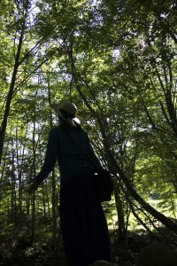 Forêt et moi